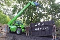 Dvouletá samice nosorožce indického Růženka se v úterý odstěhovala z plzeňské zoo do švýcarské Basileje