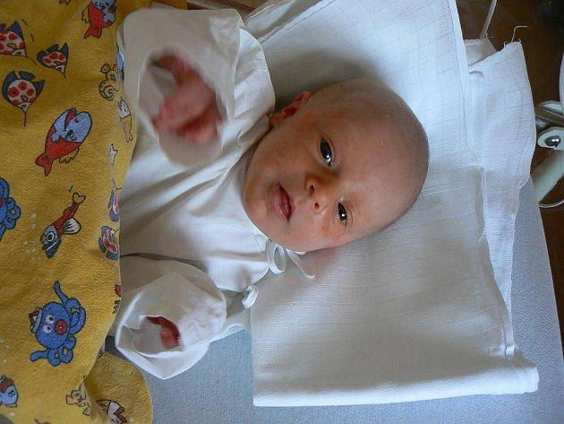 Celá rodina je nadšená z narození Andrejky (2,70 kg, 47 cm), prvorozené dcery Pavly Řežábkové a Luďka Šnajdra z Plas. Holčička přišla na svět 20. 3. ve 14.53 hod. ve FN v Plzni