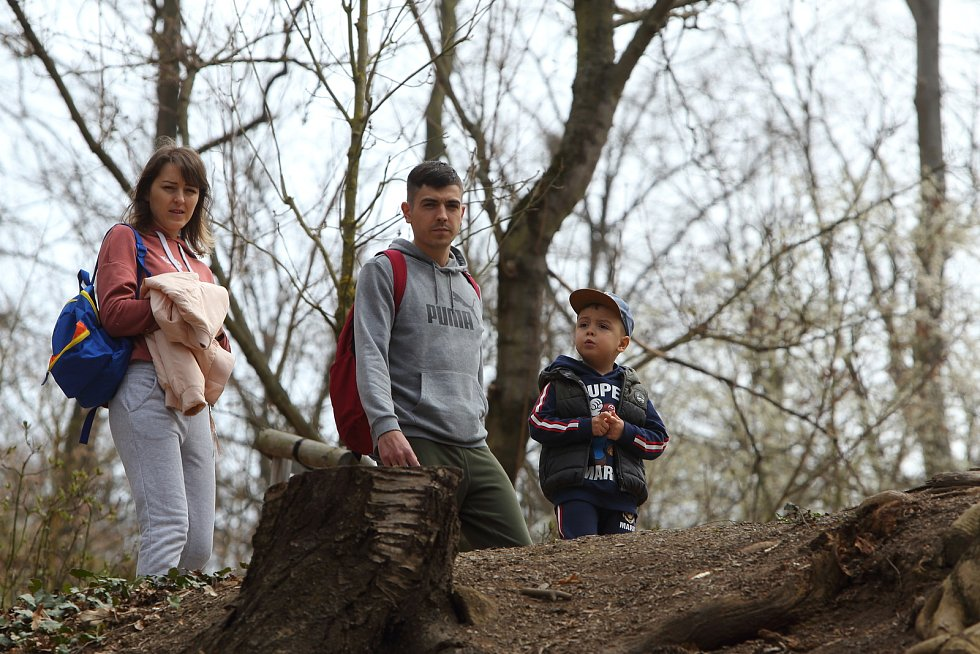 Lobezký park v Plzni
