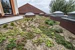 Zelená střecha. Ilustrační foto