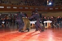 Prvním policejní ples pořádaný Krajským ředitelstvím policie Západočeského kraje