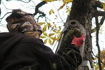 Nové budky si ptáci našli, líbily se sýkorkám i vrabcům.