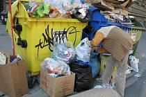 Lidé hledající užitečné věci odpad většinou ještě více rozhází. Kolem popelnic se ho válí tuny. Do úklidu skládek dává obvod milion korun ročně.