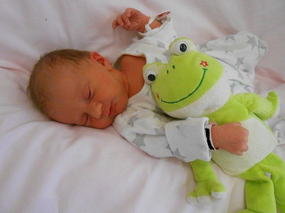 Thea D. se narodila v Domažlické nemocnici 7. března 2021. Při narození vážila 2440 gramů a měřila 46 centimetrů.