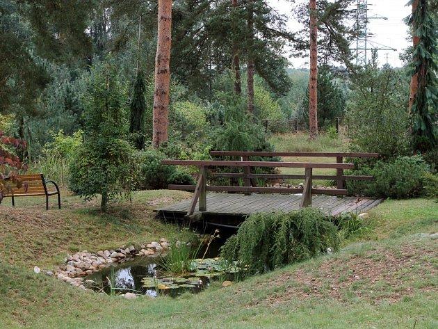 Unikátní světové arboretum bylo založeno před více než 50 lety. Dnes na ploše 22 hektarů roste okolo 37 druhů borovic