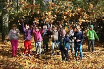 Ještě není listopad, přesto už trávu v parcích zasypalo spadané listí