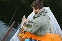 Jan Adam chytil včera svoji první letošní štiku, která měřila 45 centimetrů