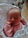 Kateřina Beránková se narodila 20. listopadu ve 13:58 mamince Kateřině a tatínkovi Martinovi z Vejprnic. Po příchodu na svět v plzeňské FN vážila sestřička Martina 3230 gramů a měřila 48 centimetrů.