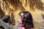 Evička a surikata