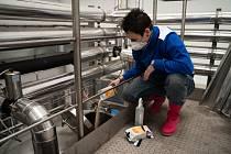 Jako jediný v České republice se v pondělí na Mezinárodní den žen zapojil plzeňský minipivovar Proud do celosvětové akce Pink Boots Collaboration Brew Day.
