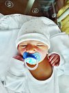 Ondřej Bicek se narodil 15. července 9 minut po půlnoci mamince Michaele a tatínkovi Tomášovi z Plzně. Po příchodu na svět v plzeňské FN vážil bráška Tomáše a Terezky 3570 gramů a měřil 50 cm.