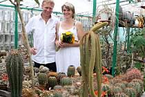 Luboše a Mariku Loosovy až donedávna spojovala jen společná vášeň pro pichlavé rostliny. Od soboty je ale ksobě pojí i manželský slib, vzali se na zahradě poblíž skleníku, v němž mají tisíce kaktusů