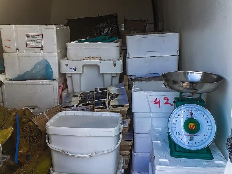 Celníci odhalili přepravu mořských plodů v nevyhovujících podmínkách
