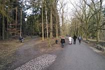 Lidé během slunečného odpoledne vyrazili do Borského parku.