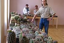 Pavel Růt ukazuje na výstavě desetinu své pětitisícové sbírky kaktusů.