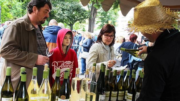 Plzeňský festival vína přilákal do Kopeckého sadů stovky lidí.