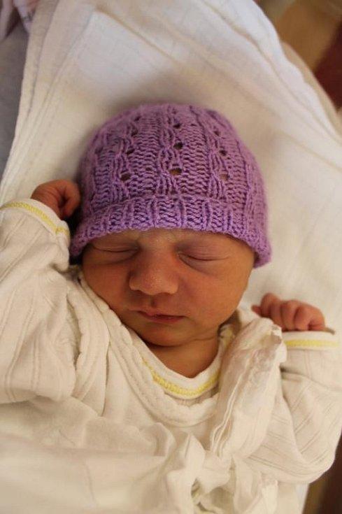 Elena (3,11 kg, 49 cm) se narodila 26. června v 9:52 ve Fakultní nemocnici v Plzni. Svoji prvorozenou dceru přivítali na světě maminka Jana Fusková a tatínek Martin Holý z Plzně