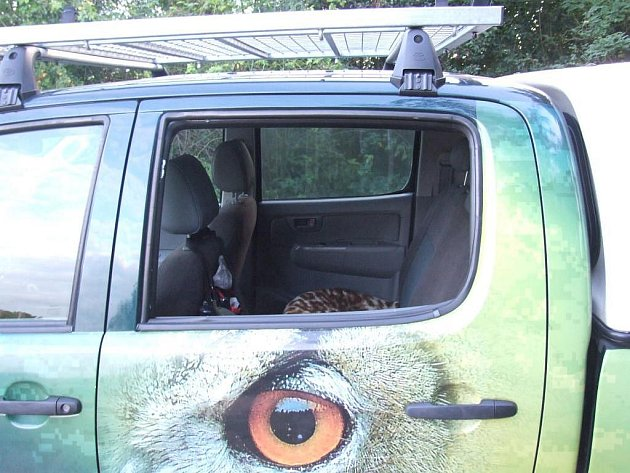 Vykradené auto Záchranné stanice živočichů
