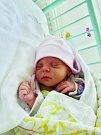 Mia Kollárová se narodila 30. června v 6:50 mamince Dianě a tatínkovi Peterovi z Plzně. Po příchodu na svět v plzeňské porodnici U Mulačů vážila jejcih prvorozená dcerka 2480 gramů a měřila 46 centimetrů.