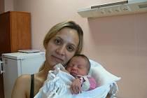 Vanessa (3,10 kg, 49 cm), která přišla na svět 17. 10. ve 20.30 hod. ve FN, je prvorozenou dcerou Michaely Fízerové a Jiřího Stehlíka zPlzně a také první vnučkou prarodičů zmatčiny strany