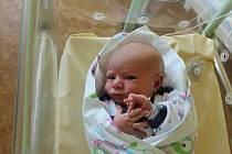 Filip Boubín (4250 g, 53 cm) se narodil 2. září ve 3:07 v porodnici Mulačovy nemocnice. Rodiče Veronika a Jan z Plzně přivítali očekávaného syna společně. Na brášku se těšila dvouletá Anetka.
