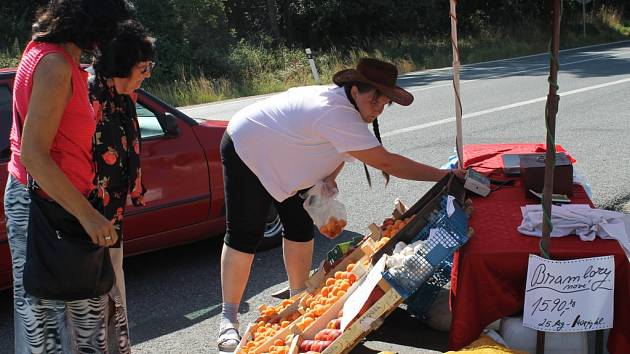Zatímco loni byly hitem prodejců u silnic meruňky, letos zatím vedou borůvky. Snímek je z loňského roku