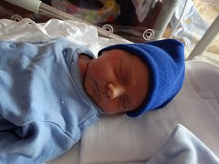 Albert Krajsa se narodil 6. srpna ve 4:58 mamince Petře a tatínkovi Petrovi z Karlových Varů. Po příchodu na svět v plzeňské FN vážil bráška dvouletého Vendelína 2460 gramů a měřil 46 centimetrů