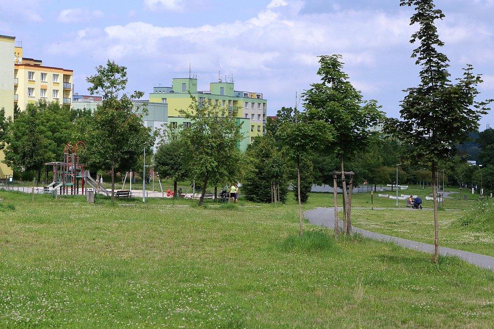 Upravený trávník ve Vrbovecké ulici na sídlišti Vinice.