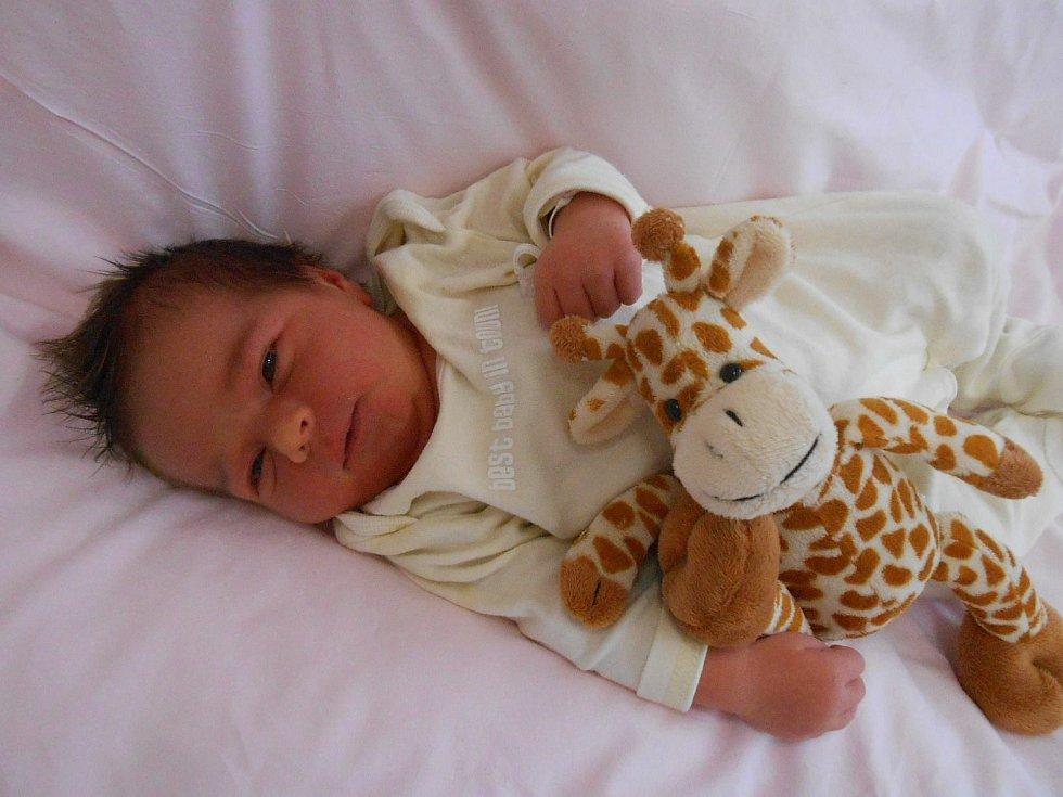 Sofie K. se narodila v domažlické porodnici 7. března 2021. Po příchodu na svět vážila 3730 gramů a měřila 50 centimetrů.