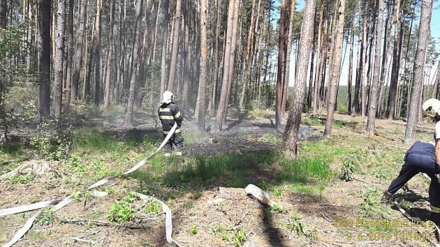 Požár v lese nedaleko přehrady Hracholusky