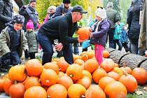 Božkovský ostrov slavil podzim s dýněmi