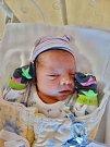 Roman Gbur se narodil 10. ledna ve 3:47 mamince Sandře a tatínkovi Romanovi z Chebu. Po příchodu na svět v plzeňské FN vážil bráška čtyřleté Laury 2920 gramů a měřil 45 centimetrů.