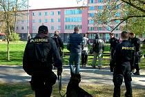 Policisté opět vyrazili do Borského parku v Plzni