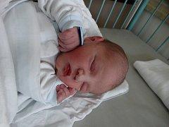 Jan Rybář se narodil 10. listopadu ve 3:34 mamince Marii a tatínkovi Janovi ze Starého Plzence. Po příchodu na svět v porodnici U Mulačů vážil jejich první syn 2950 gramů a měřil 48 cm