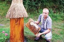 Využít dotací, které jsou včelařům k dispozici, je rozhodnutý využít také Jaroslav Bejda z Mladotic. Bude rozšiřovat svoje včelstva, kterých má prozatím osmadvacet.