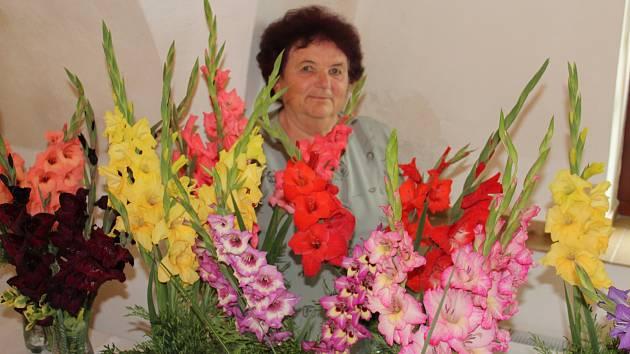 Jaroslava Rybáková ze Žinkov pěstuje na zahradě více než 200 druhů gladiol. S některými se přišla pochlubit na víkendovou výstavu květin.