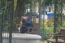 Plzeňští strážníci přistihli v úterý dvě dvojice, které porušily současné nařízení o zákazu pití alkoholu na veřejnosti. Nejprve v Křižíkových sadech, poté na tržnici U Práce.