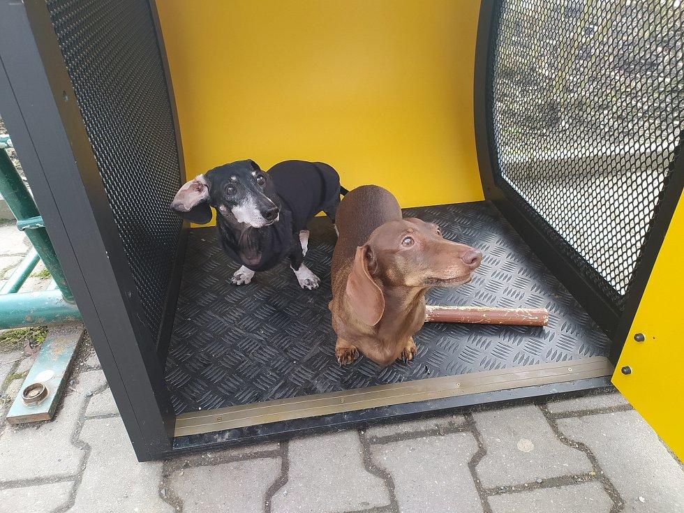 Manželé Koželuhovi z Plzně vytvořili uzamykatelnou psí boudu, použití je zdarma