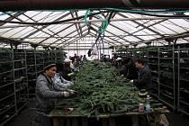 Podnikatel zaměstnával 159 cizinců načerno, vyráběli pro něj adventní zboží