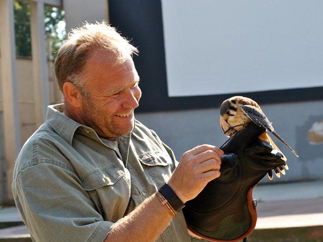 Ukázky sokolnictví vede sokolník Milan Zaleš. Kromě velkých dravců předvádí i menší zástupce ptačí říše