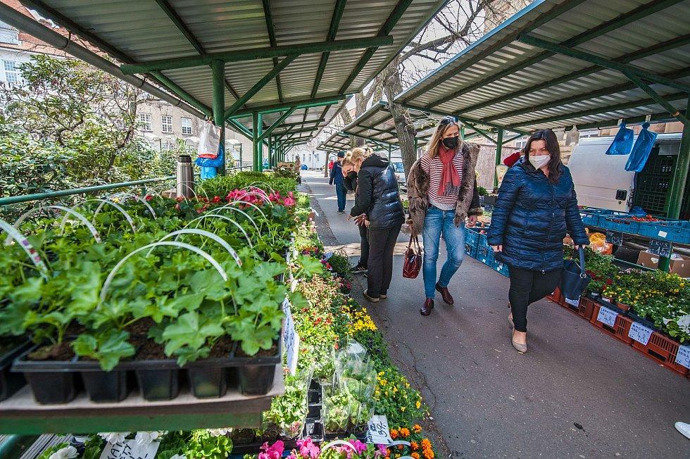 Trhy na Chodském náměstí v Plzni.