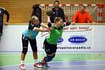 Turnaj žen v národní házené - TJ Přeštice x TJ Sokol Dobruška.