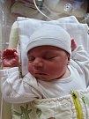 Kristýna Sloupová se narodila 4. dubna ve 14:05 mamince Aleně a tatínkovi Petrovi z Mariánských Lázní. Po příchodu na svět v plzeňské fakultní nemocnici vážila sestřička dvouleté Michaely 3570 gramů a měřila 49 centimetrů.