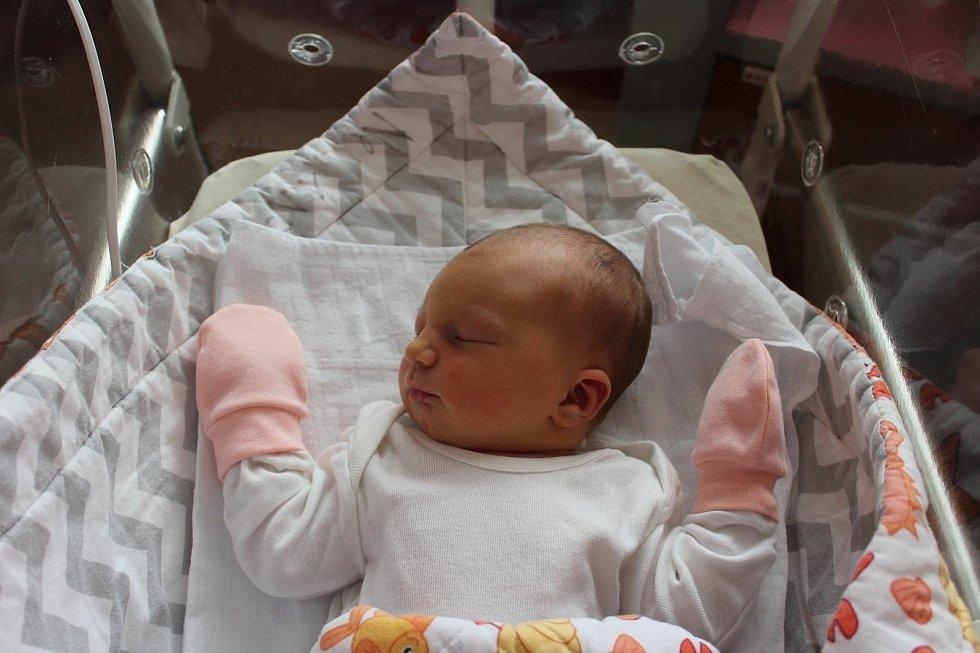 Josefína Králová (3480 g, 50 cm) se narodila 28. června ve 23:35 ve FN na Lochotíně. Rodiče Kateřina a Matěj z Plzně přivítali svoji prvorozenou očekávanou dceru společně.