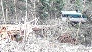 Mezi Zelenou Lhotou a Hamry najel osobní vlak do stromu.