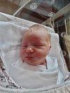 Stela Glusová se narodila 19. března v 7:29 mamince Michaele a tatínkovi Tomášovi z Líní. Po příchodu na svět v plzeňské fakultní nemocnici vážila jejich prvorozená dcerka 3650 gramů a měřila 53 centimetrů.
