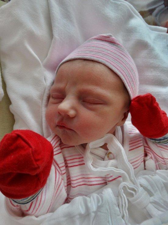 Marie Ciprová se narodila 20. června ve 12:47 mamince Ivaně a tatínkovi Michalovi z Přeštic. Po příchodu na svět v plzeňské FN vážila jejich první dcera 2670 gramů a měřila 49 cm
