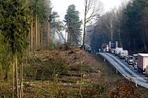 Mezi Kamenným rybníkem a Třemošnou se kácí stromy.