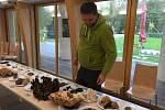 Návštěvníci v centru Caolinum v Nevřeni si o víkendu mohli prohlédnout až 120 druhů hub. O odborný výklad se postaral mykolog Luboš Zelený.