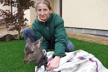 Martina Kubecová z Malesic s mládětem jelena siky